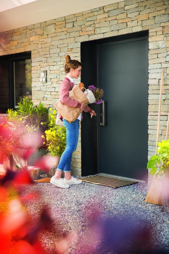 Portoncini Planar . Nell'immagine FIN-Door Planar Style 01 alluminio-allumino.