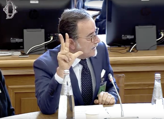 Francesco Mangione bel Corso dell'audizione presso la Commission attività produttive